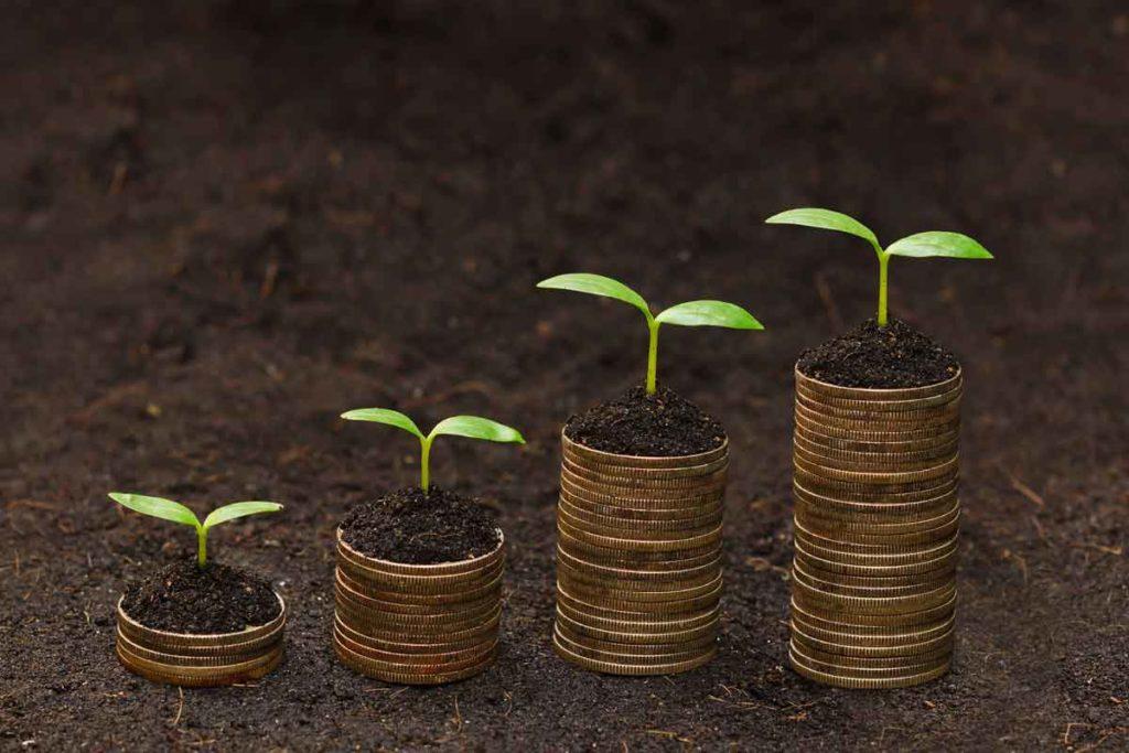 Affluence Investment Fund Update – August 2016